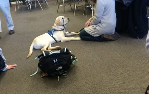 Hopkinton High School Makes Strides to Reduce Stress Levels