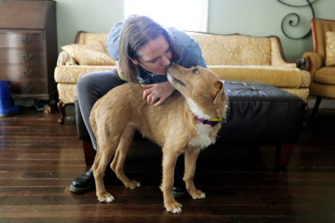 A woman is playing with her newly adopted dog. She was recently given more time at home because of the stay-at-home set in place. Cited from New York Times